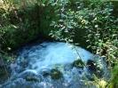 reka-ribnica_10
