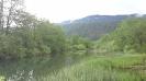 reka-ribnica_1