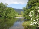 reka-ribnica_2